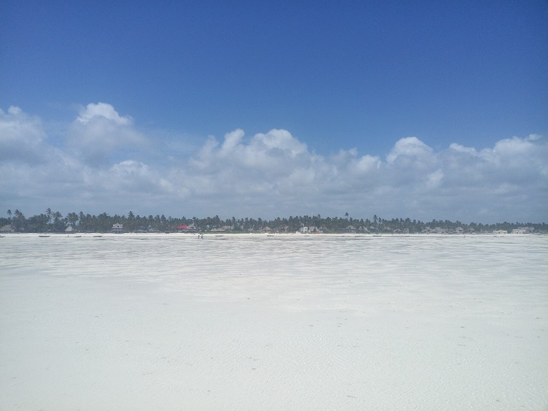 Отлив на Занзибаре