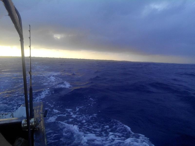 занзибар рыбалка