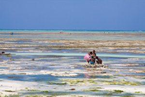 пляж чвака во время отлива на занзибаре