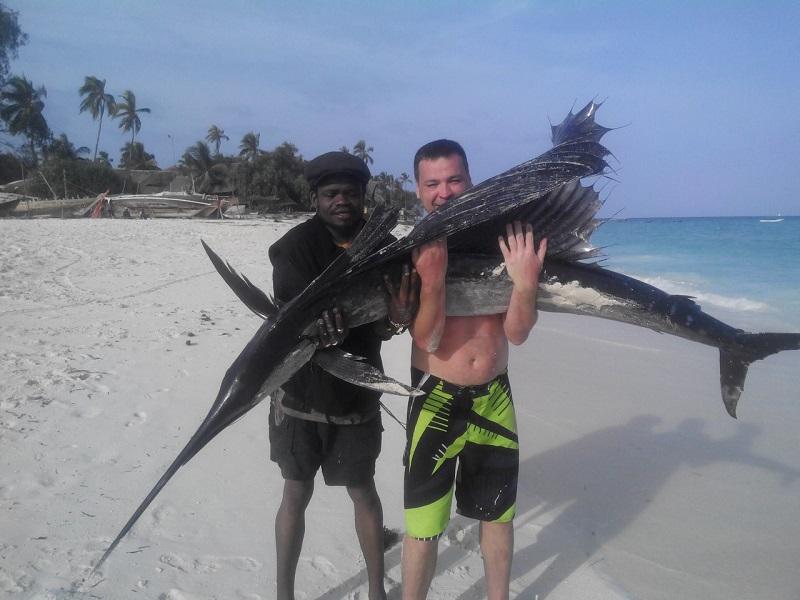 рыба-парусник занзибар