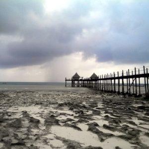 приливы и отливы Занзибара