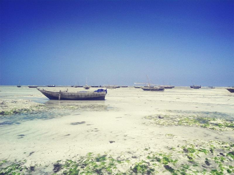 отливы Занзибара