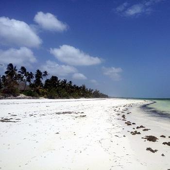 Пляж Пвани Мчангани (pwani mchangani)