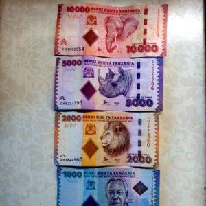 какая валюта на занзибаре