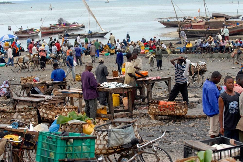 Рыбный рынок Занзибар