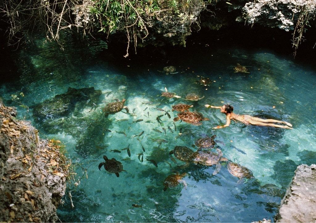 аквариум в нунгви
