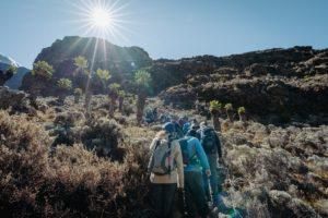 цена восхождения на Килиманджаро